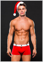 Costume de Père Noël Envy Santa Trunks (M/L)
