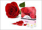 Bed of Roses - Petali di rosa e candele a LED - Rosso